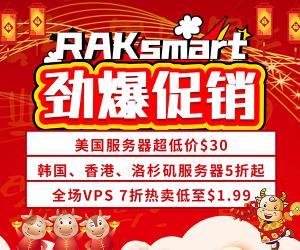 RAKsmart香港服务器新年活动